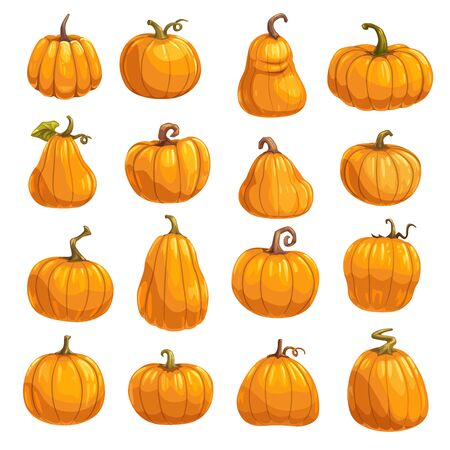 Pumpkin, squash and gourd vegetable cartoon icons. Orange and yellow autumn pumpkins with green leaf isolated vector symbols for agriculture harvest, Thanksgiving or Halloween holidays design 向量圖像