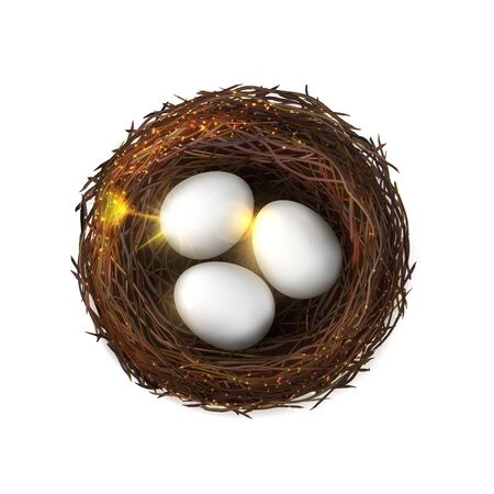 Bird nest with eggs, made of branches isolated. Vector glittering birds nest in realistic design, farming and agriculture. Chicken eggs, poultry breeding, birdie embryo food, wooven eco birdnest Illustration