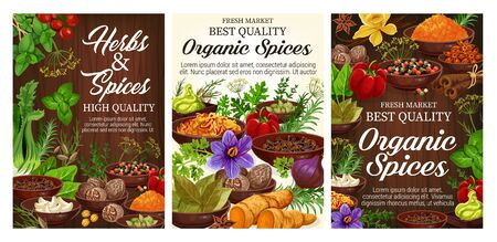 Fresh herbs, spices, vegetable seasonings and food condiments on wooden background. Vector pepper, parsley and basil, cinnamon, vanilla and nutmeg, garlic, ginger and rosemary, turmeric powder, celery Illustration