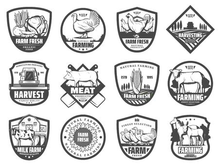 Farm vector badges of milk, vegetable and meat food product, agriculture and farming design. Barn, cow animals and tractor, ranch field, pig and rooster, chicken, corn and wheat harvest, farmer market Illustration