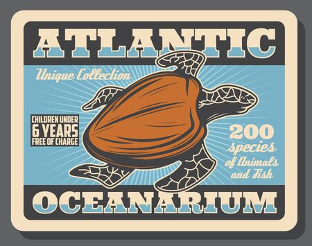 Sea turtle, underwater ocean animal retro poster of Atlantic Oceanarium promo design. Pacific green turtle with brown carapace swimming in blue water of aquarium