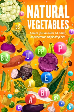 Natural vitamins of fresh vegetables and beans, health food design. Vector tomato, carrot and garlic, cabbage, radish and corn, asparagus, cauliflower and eggplant, pea, onion and potato veggies
