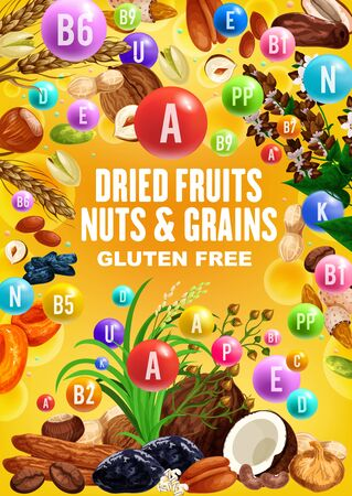 Nuts, dried fruits and grains rich of vitamins. Vector date, peanut and walnut, fig, raisins and almond, hazelnut, pistachio and wheat, rice, apricot and prune, buckwheat, coconut and banana