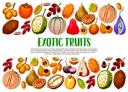 Exotic fruits, tropical berries branches vector banner with border of vegetarian food. Fig, cantaloupe and kiwano, persimmon, granadilla and akebia, marang, bael and star apple, chambakka, jackfruit Иллюстрация