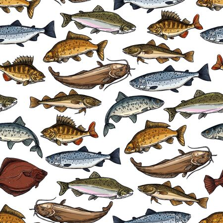 Fish seamless pattern with sea and river animal vector background. Marine salmon, tuna and ocean perch, carp, trout and herring, anchovy, mackerel and flounder, catfish, hake and bass sketches