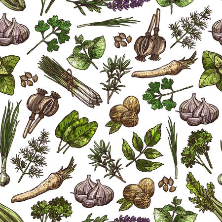 Spices and herbs vector seamless pattern background with vegetable seasonings and food condiments. Parsley, garlic and dill, nutmeg, rosemary and thyme, basil, mint and green onion, celery and poppy Ilustracja