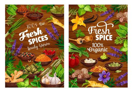 Spices vector design with herbs, vegetable seasonings and condiments frame. Pepper, parsley and garlic, vanilla, cinnamon and nutmeg, ginger, basil and rosemary, anise, thyme, saffron, wood background Zdjęcie Seryjne - 128162247