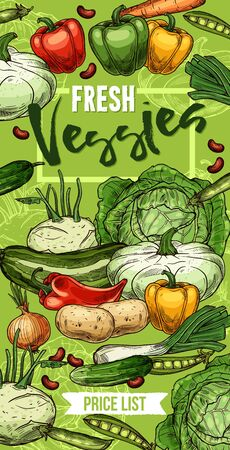 Fresh vegetables and beans vector design with sketches of pepper, carrot and cabbage, onion, potato and zucchini, green pea, kohlrabi and leek, patty pan squash and cucumber. Farm veggies price list