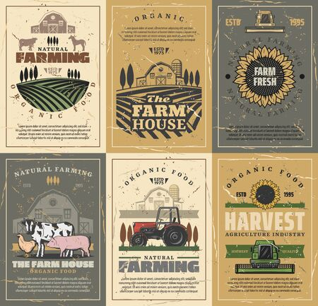 Agriculture and farming vector design with farm field, tractor and barn, cow animals, vegetables and sunflower, chicken, rooster and horse. Meat, milk and poultry farm, grow crops themes