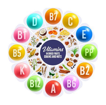 Schema tondo frutta secca, vitamine nus e grais. Grafico vettoriale di dati nutrizionali con arachidi, datteri e mandorle, uvetta, fichi e nocciole, cereali, noci e pistacchi, albicocche, avena, grano saraceno