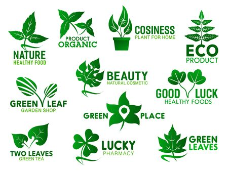Green leaf, branch and plant in pot vector icons. Corporate identity symbols of healthy food, natural cosmetics and eco product, garden shop and pharmacy emblems design