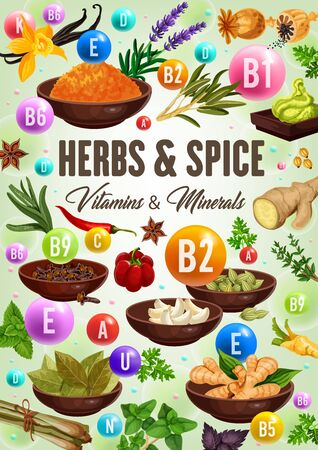 Vitamins and minerals of green herbs and spices, healthy food vector design. Vanilla, chilli pepper and rosemary, thyme, parsley and ginger, garlic, anise star and mint, bay leaves, cardamom, poppy