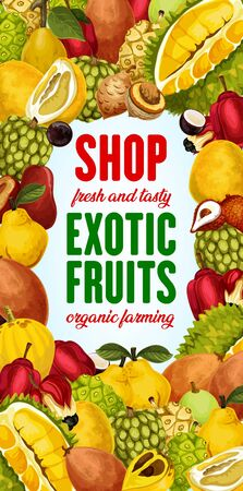 Exotic fruit shop vector poster with tropical berries frame. Pomelo, quince and asian jackfruit, ackee, sweetsop and jabuticaba, mulberry, chambakka and sapodilla, lucuma and granadilla. Food design Stock Vector - 128446166