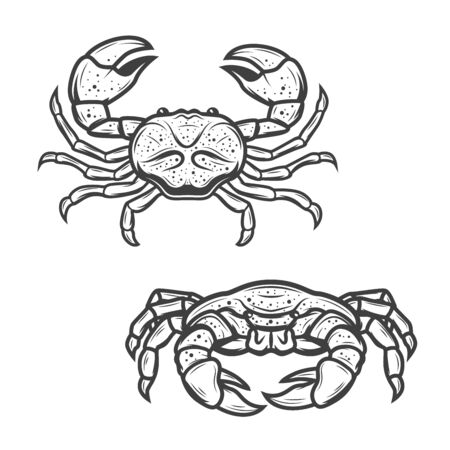 Crab seafood isolated icon. Vector marine crustacean symbol of sea fishing or ocean fisher catch, fishery sea food underwater animal, zoology crab and salty snack sign Ilustração