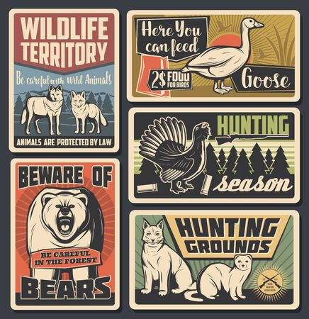 Hunting open season, wild animals natural park and beware of bear warning vintage posters. Vector wildlife wolf and fox territory, forest bobcat lynx and ermine hunt area, wildfowl goose feeding sign