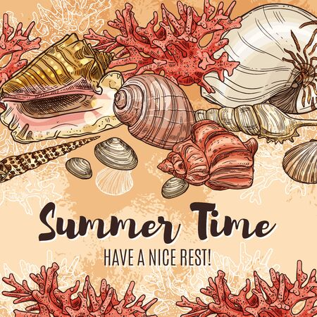 Summertime and seashells, summer holiday and sea travel sketch poster. Vector welcome to summer paradise ribbons, sea shells and corals on beach sand, seaside holiday resort or spa center