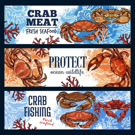 Crab sea animal, seafood and endangered species. Vector marine shellfish, ocean crustacean with pincers and claws, mediterranean cuisine. Protect extincting lobsters and fishing on crawfish advert Иллюстрация