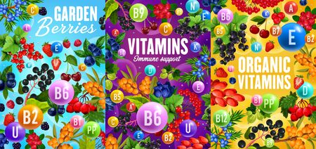 Berries and vitamins, organic superfood healthy nutrition. Vector garden cherry, strawberry and raspberry, blueberry or cranberry fruits, black and red currant, barberry