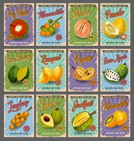 Tropical fruits market price cards, farm market of fruit. Vector pu hala, mamonchillo or melon and pomelo, exotic ban balang, kumquat or pepino and sour apple with longkong, jackfruit, sow apple