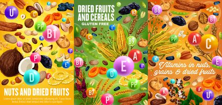 Nuts, cereals and dried fruits, vitamins and minerals in snacks. Vector gluten free grains and seeds, sweet raisins, prunes and pineapple. Organic vegetarian food figs and hazelnut, cashew and peanuts