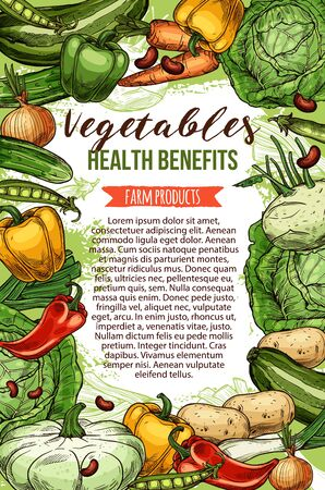 Vegetables and farm products, vector sketch. Healthy veggies food, cabbage and carrot, beans and onion, zucchini squash. Health benefits of vegetarian food, pea and green leek