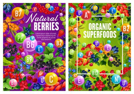 Natural garden and forest berries, organic superfood. Vector multivitamin complex of C, D, B, vitamins and minerals. Cherry and sea buckthorn, cranberry, honeysuckle and blackcurrant, juniper barberry Banco de Imagens - 130447765