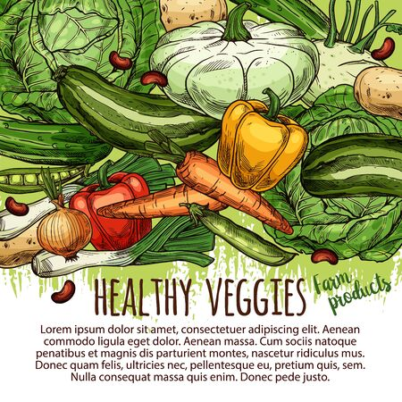 Healthy veggies, sketches of vegetable farm products. Vector cabbage and carrot, paprika pepper and onion, potato and beans. Zucchini and green pea, cucumber and squash marrow, kohlrabi and leek