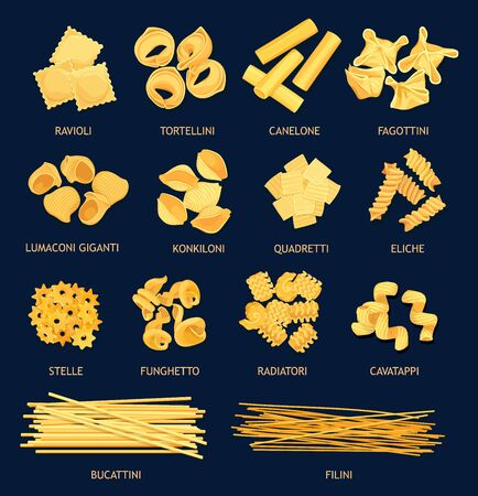 Italian cuisine pasta types. Vector ravioli and tortellini, canelone, fagottini, lumaconi giganti and kinkiloni. Quadretti, eliche, stelle and funchetto, radiatori and cavatappi, bucattini and filini