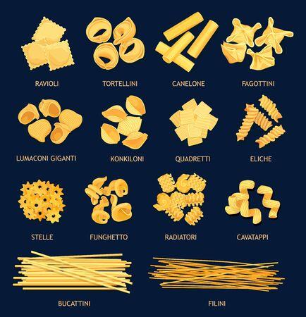 Tipi di pasta della cucina italiana. Ravioli e tortellini vettoriali, canelone, fagottini, lumaconi giganti e kinkiloni. Quadretti, eliche, stelle e funchetto, radiatori e cavatappi, bucattini e filini