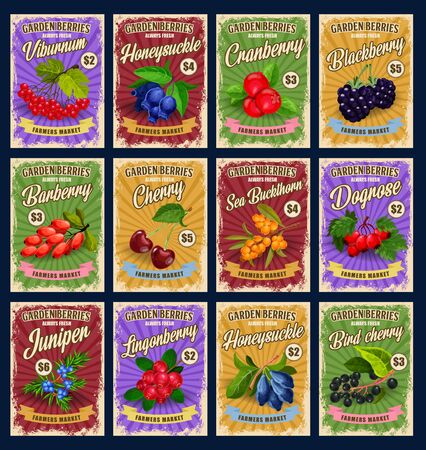Garden natural berries, retro price cards. Vector viburnum and honeysuckle, cranberry and blackberry, barbery and cherry, sea buckthorn. Dogrose and juniper, lungoneberry, bird cherry harvest Illustration