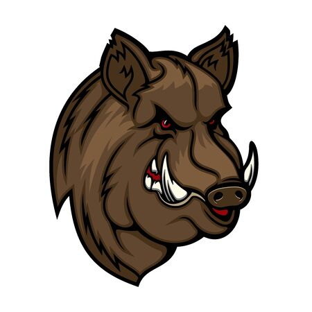 Wild boar, pig or hog mascot with head of forest animal. Vector icon of angry swine with evil grin, sharp tusks and brown fur. Hunting club and sport team symbol design