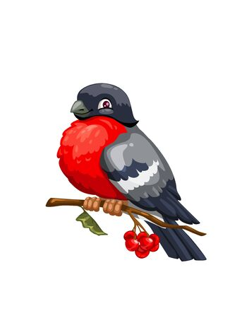 Bullfinch cartoon winter bird sitting on branch of viburnum tree with red berries and green leaf. Vector Eurasian bullfinch with gray and red plumage, wild bird mascot design Illustration