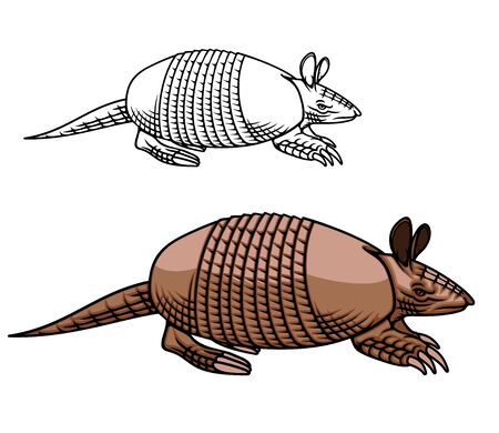Armadillo animal vector icon design of American mammal with brown armoured shell or carapace, legs with scale and long claws. Nine-banded armadillo mascot of zoo or hunting sport club