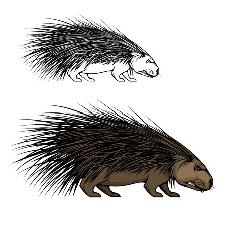 Porcupine or hedgehog animal vector mascot. Wild forest mammal with sharp spines or quills, brown fur and angry grin, predatory rodent icon of sport team, hunter club or European wildlife design Ilustração