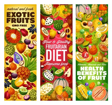 Exotic fruits vitamins and GMO free tropical berries vector design of fruitarian diet. Cantaloupe, dates and pomelo, jackfruit, soursop and kiwano, tangerine, cherimoya and marang, akebia and quince