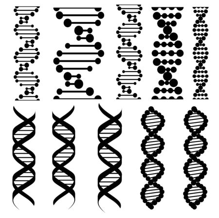 DNA molecules isolated silhouettes. Vector twisted spiral or helical structure of chromosome cells, human genes. Molecular chain genome, DNA helixis, genetic code