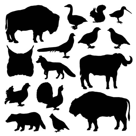 Wild animals and birds monochrome vector silhouettes. Lynx and buffalo, forest fox and bison, woodcock and partridge, squirrel and ox, grouse and goose, duck and badger, fox and pheasant Illustration