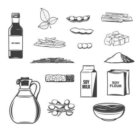 Croquis de soja d'aliments et de boissons à base de soja vectoriel. Fèves de soja, fromage de tofu et lait, huile, tempeh, sauce miso et pâtes, peau, viande et farine, grains germés, gousse et feuille. Conception de plats végétariens asiatiques
