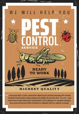 Agriculture pest control vector design of insects and plants. Farm field and bugs, colorado potato beetle, locust or grasshopper and ladybug. Crop protection with chemical pesticides and herbicides