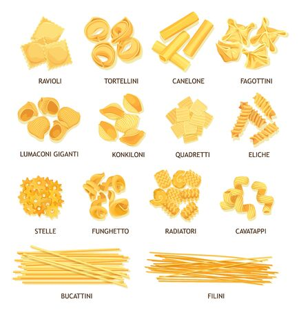 Pasta, macaroni and spaghetti of Italian food vector design. Fusilli, tortellini and ravioli, cannelloni, noodle and stelline, conchiglie, dumplings and bucatini, lasagna, filini and funghetto shapes