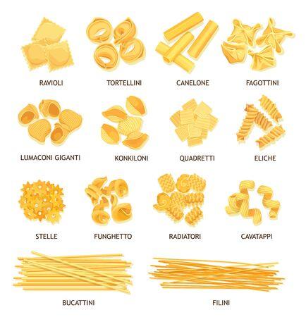 Pasta, maccheroni e spaghetti di disegno vettoriale di cibo italiano. Fusilli, tortellini e ravioli, cannelloni, tagliatelle e stelline, conchiglie, gnocchi e bucatini, lasagne, filini e funghetto