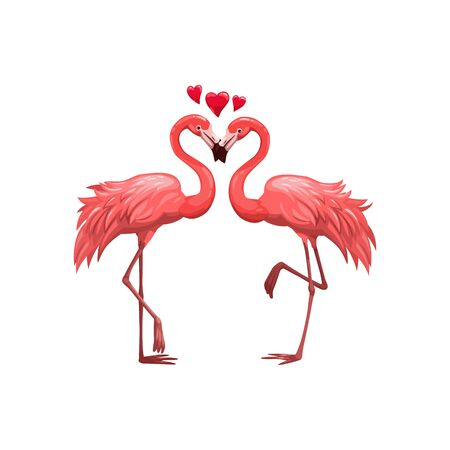Pair of flamingos isolated birds. Vector pink flamingo in love, Valentines day animals couple