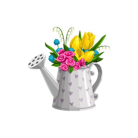 Springtime roses, tulips, may-lily and forget-me-nots flowers in watering can. Isolated vector spring bouquet Illustration