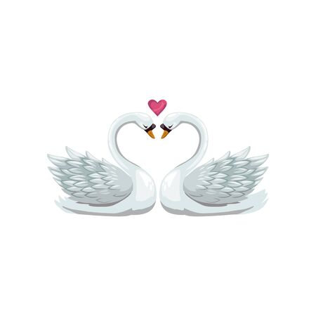 Pair of swans isolated birds. Vector waterbirds with long neck, heart symbol of love