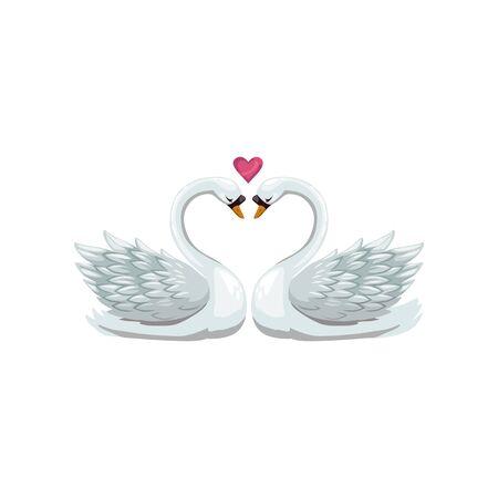 Par de cisnes aves aisladas. Aves acuáticas de vector con cuello largo, símbolo del corazón del amor