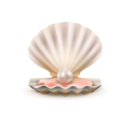 Seashell with pearl realistic 3d vector of sea and ocean treasure design. Open shells of scallop marine mollusk or shellfish with shiny white pearl inside Illustration