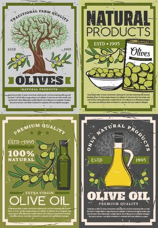 Natural products of olives, retro extra virgin oil and fruits on branches. Vector organic dressing in bottles and jugs, can and bowl of picked green olive, vegetable seasoning mediterranean cuisine