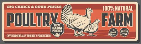 Poultry farm vector banner, breeding chickens, hens and turkey, quails for meat and eggs. Animal and bird farming or husbandry, organic food and agriculture themes Illustration
