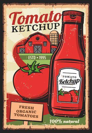 Ketchup aux tomates, affiche rétro vintage de vecteur. Produits alimentaires biologiques cultivés à la ferme, bouteille de ketchup à la tomate 100 % naturelle avec étiquette de qualité supérieure