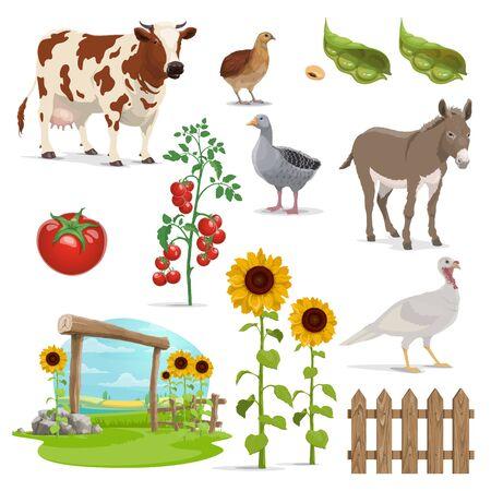 Campo vettoriale di fattoria e agricoltura, animali, alimenti vegetali e piante coltivate. Campo dell'agricoltore, vacca da latte e natura del villaggio, chicchi di fagioli, pomodori, girasoli e recinzione, oca, tacchino, quaglia e asino